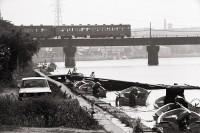 信濃川 1979